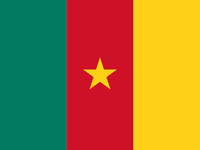 Daily sports betting picks in Cameroon